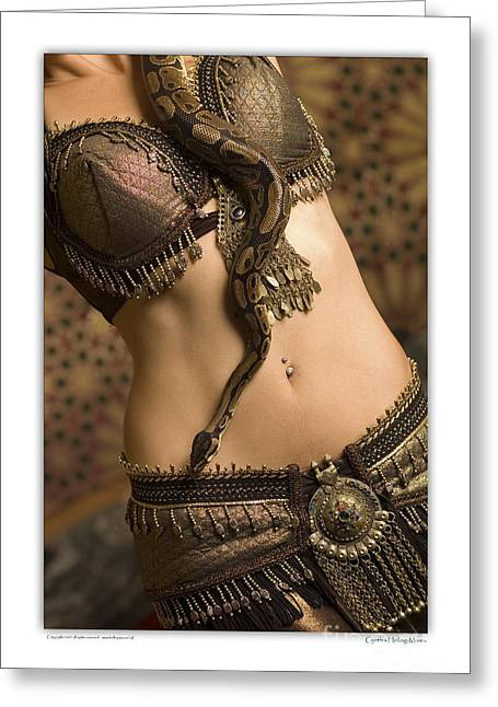 Tribal Belly Dance Greeting Cards - Marta and the snake Greeting Card by Cynthia Holling-Morris