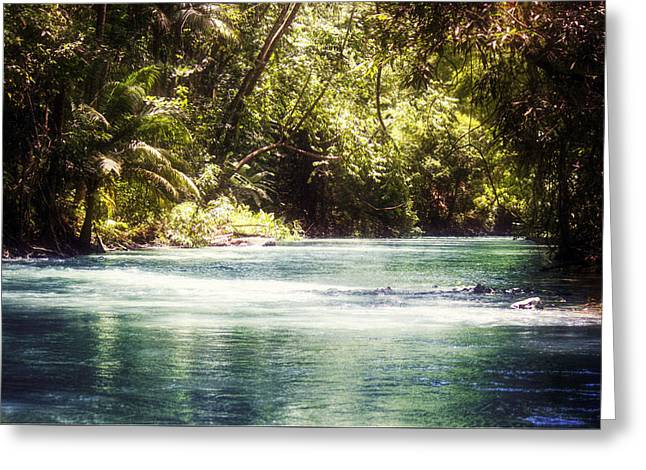 Martha Brae River Greeting Cards - Martha Brae River Greeting Card by Melanie  Lankford Photography