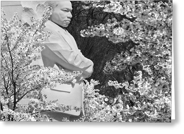 Martin Luther King Jr. Greeting Cards - Martin Luther King Memorial through the Blossoms Greeting Card by Mike McGlothlen
