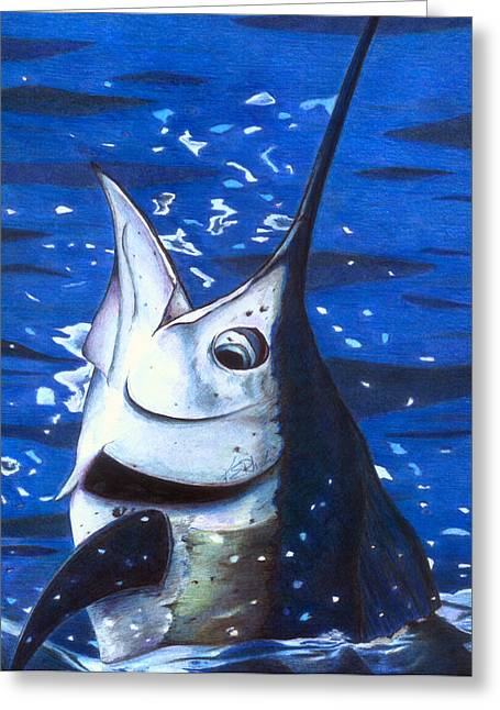 Saltlife Greeting Cards - Marvin Sailfish Greeting Card by Karen Rhodes