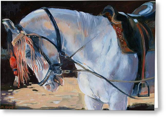 Marwari Horse Greeting Card by Jennifer Wright
