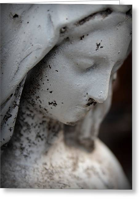 Garden Statuary Greeting Cards - Mary in the Garden Greeting Card by Lynn Sprowl