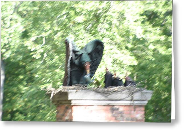 Maryland Renaissance Festival - People - 121272 Greeting Card by DC Photographer