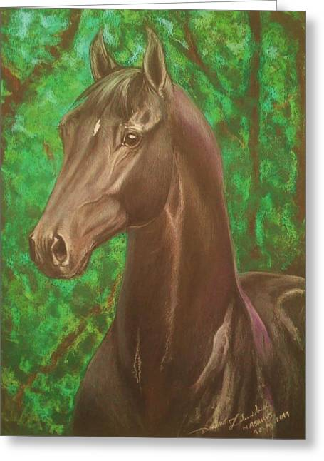 Equestrian Prints Pastels Greeting Cards - Mashius- black warmblood stallion Greeting Card by Dorota Zdunska