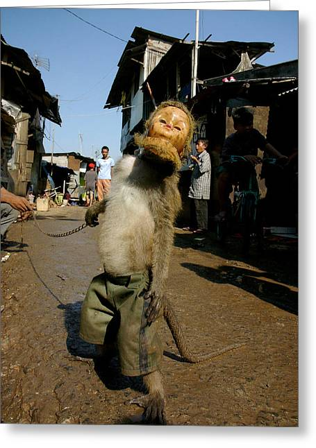 Performing Monkey Greeting Cards - Masked Monkey In Jakarta Greeting Card by Ubud High