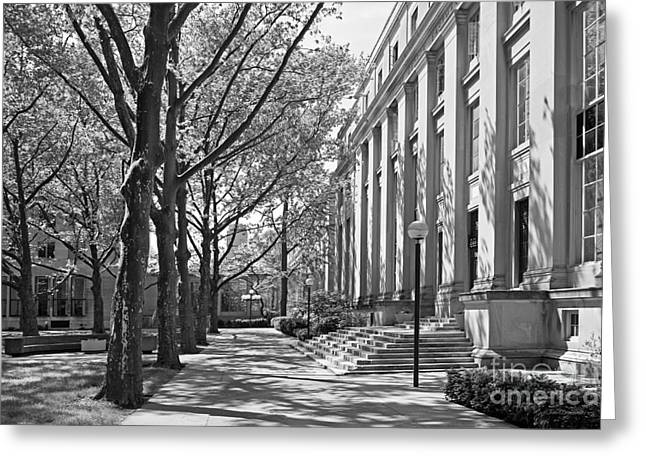 Architecture Greeting Cards - Massachusetts Institute of Technology Eastman Labs Greeting Card by University Icons