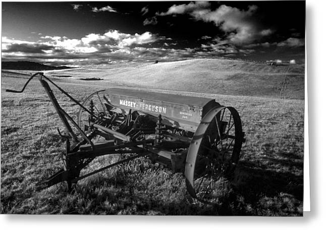 Old Farm Greeting Cards - Massey Fergusen Greeting Card by Sean Davey
