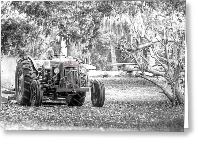 Scott Hansen Greeting Cards - Massey Ferguson Tractor Greeting Card by Scott Hansen