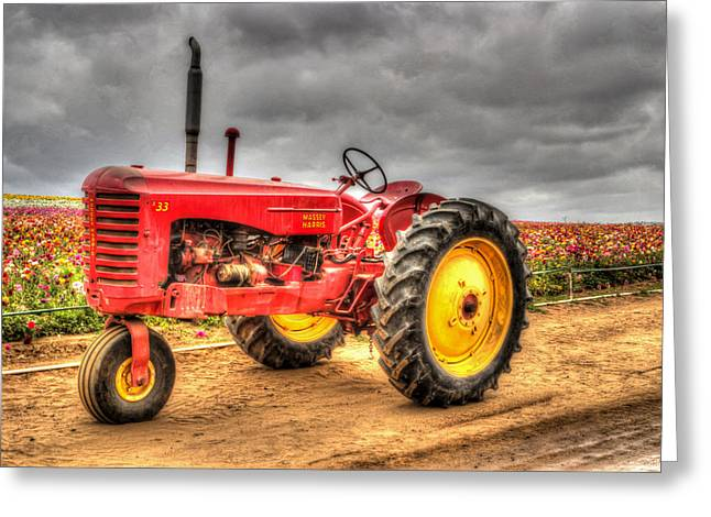 Pull Greeting Cards - Massey Greeting Card by Heidi Smith