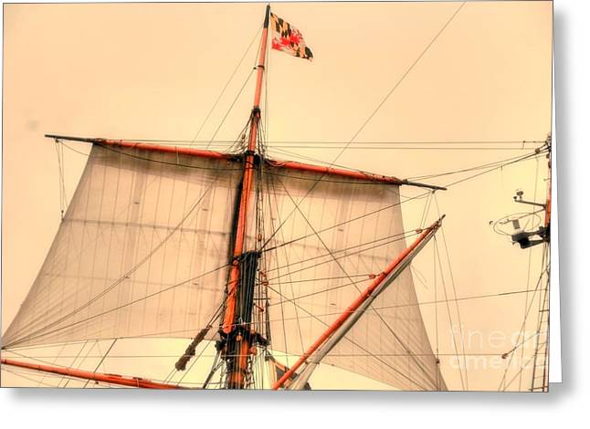 Mast Greeting Card by Kathleen Struckle
