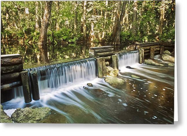 Martin County Greeting Cards - Masten Dam Greeting Card by Patrick M Lynch