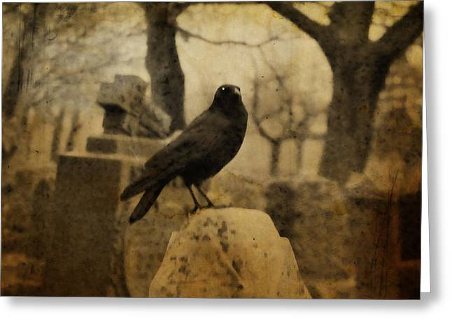 Crows On Tombstones Greeting Cards - Master Greeting Card by Gothicolors Donna Snyder