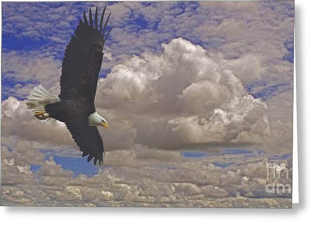 Master In Flight - Signed  Greeting Card by J L Woody Wooden