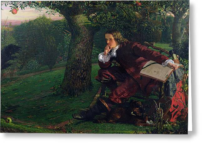 Mathematician Greeting Cards - Master Isaac Newton, 1905 Oil On Canvas Greeting Card by Robert Hannah