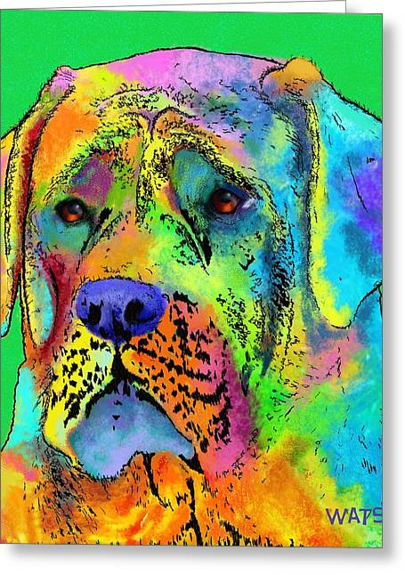 Guard Dog Greeting Cards - Mastiff Greeting Card by Marlene Watson
