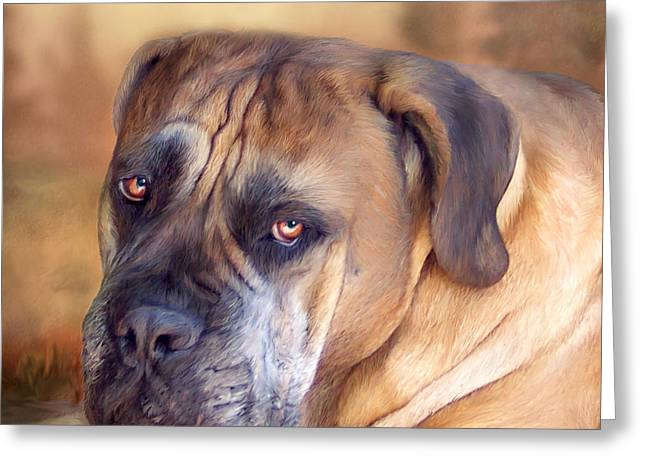 Dog Prints Mixed Media Greeting Cards - Mastiff Portrait Greeting Card by Carol Cavalaris