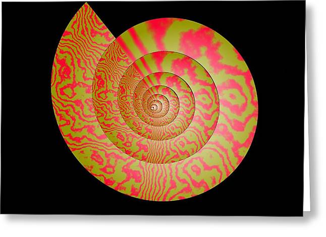 Spiral Greeting Cards - Math Conch Greeting Card by GuoJun Pan