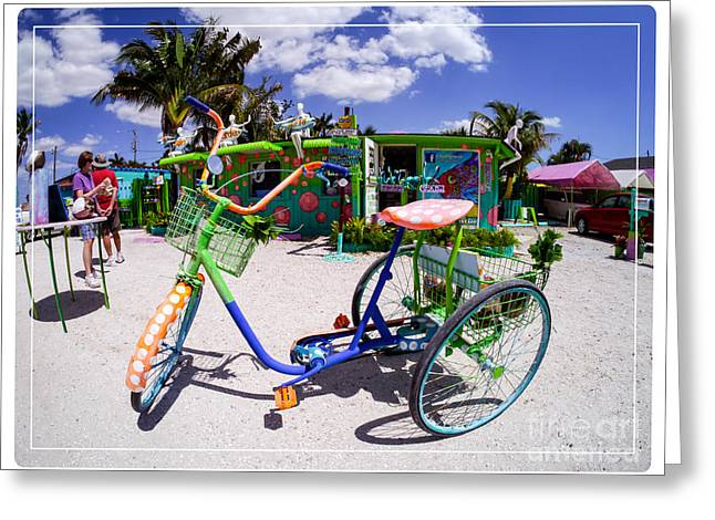 Southeast Photographs Greeting Cards - Matlacha Florida Greeting Card by Edward Fielding