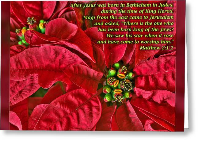 Star Of Bethlehem Greeting Cards - Matthew 2 1-2 Greeting Card by Dawn Currie