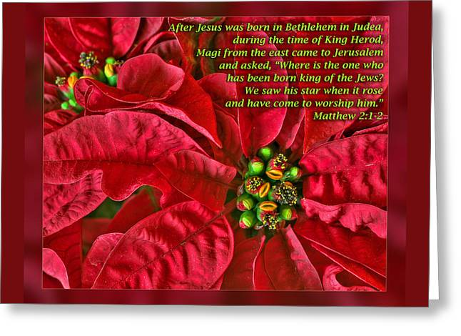 Star Of Bethlehem Greeting Cards - Matthew 2 1-2 Greeting Card by Dawn Currie