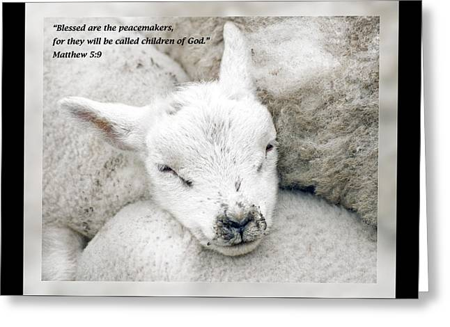 Christ Child Greeting Cards - Matthew 5 9 Greeting Card by Dawn Currie