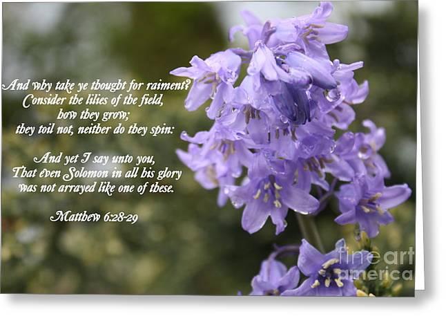 Matthew 6 Verses 28 And 29 Greeting Card by Vicki Maheu