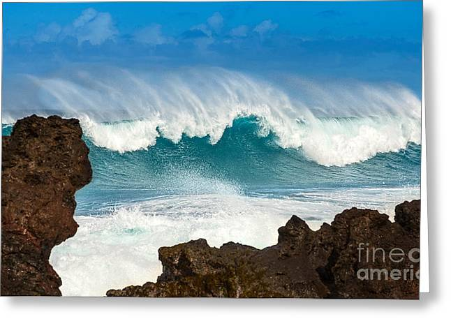 North Shore Greeting Cards - Maui Monster Greeting Card by Jamie Pham