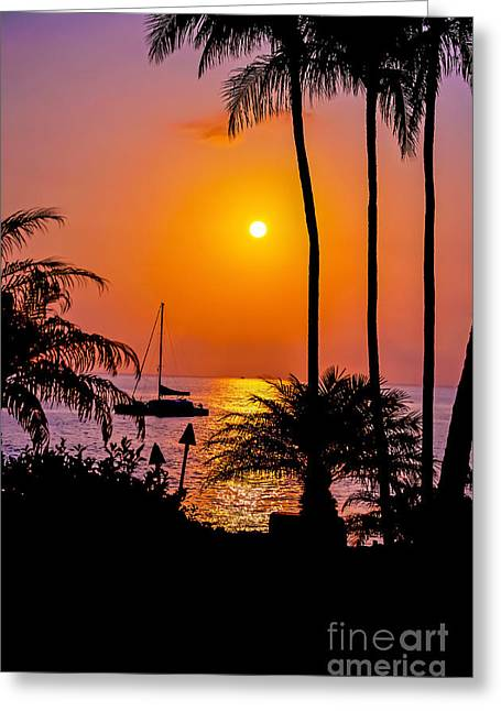 Sailboat Images Greeting Cards - Maui Palms Sunset Greeting Card by Baywest Imaging