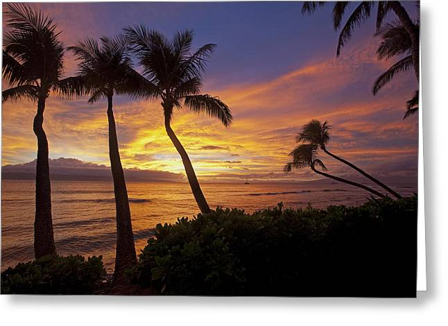 ; Maui Greeting Cards - Maui Sunset Greeting Card by James Roemmling