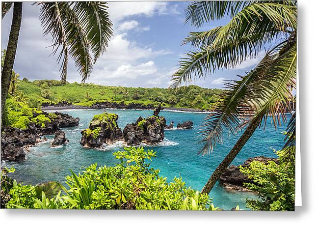 Lush Green Greeting Cards - Mauis Black Sand Beach Greeting Card by Pierre Leclerc Photography