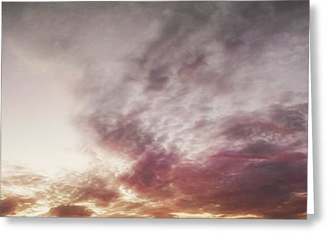 Florals Prints Greeting Cards - Mauve Skies Greeting Card by Holly Martin