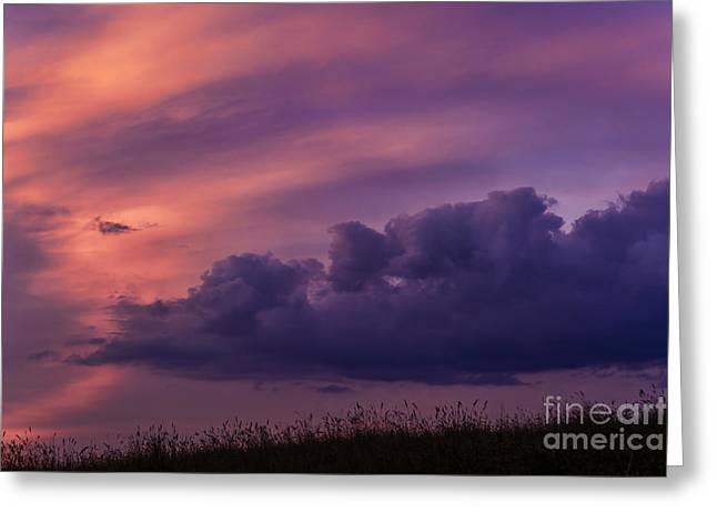 Colorful Cloud Formations Greeting Cards - Mauve Sunrise Greeting Card by Thomas R Fletcher