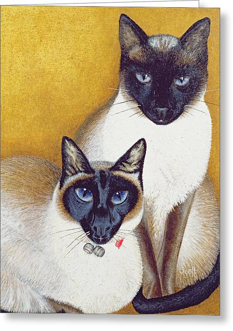 Siamese Cat Greeting Cards - Mavis And Barnaby Greeting Card by Pat Scott