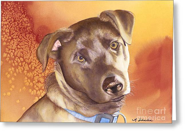 Chocolate Lab Greeting Cards - Max Greeting Card by Amanda Schuster