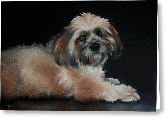 Canines Art Pastels Greeting Cards - Maxi Greeting Card by Cynthia House