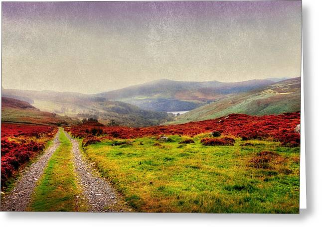 Grasses Greeting Cards - May it Be Your Journey On. Wicklow Mountains. Ireland Greeting Card by Jenny Rainbow