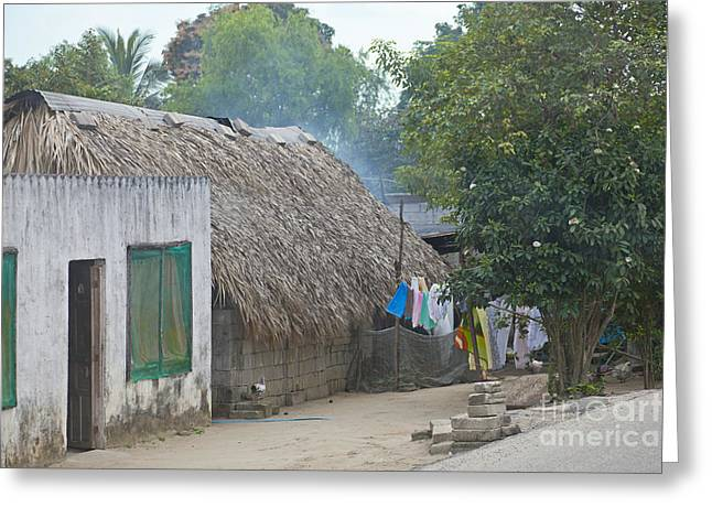 Historic Home Greeting Cards - Mayan Home, Mexico Greeting Card by Ellen Thane