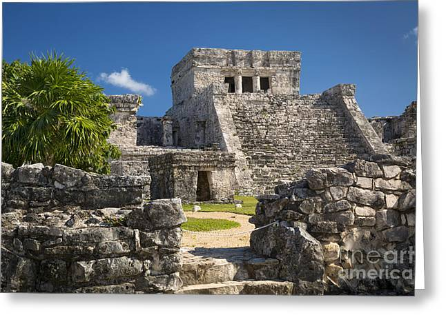 Stepping Stones Greeting Cards - Mayan Temple Greeting Card by Brian Jannsen