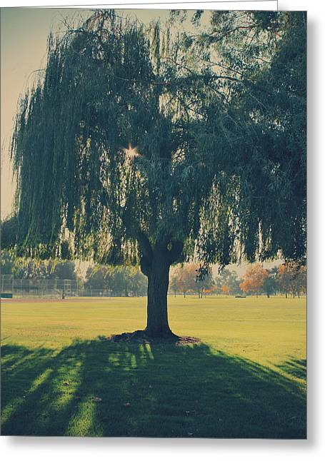 Weeping Photographs Greeting Cards - Maybe Well Find It Someday Greeting Card by Laurie Search