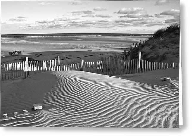 Amazing Jules Greeting Cards - Mayflower Beach Black and White Greeting Card by Amazing Jules
