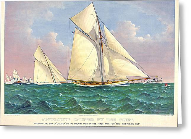 Galatea Greeting Cards - Mayflower Beats Galatea 1886 Greeting Card by Padre Art