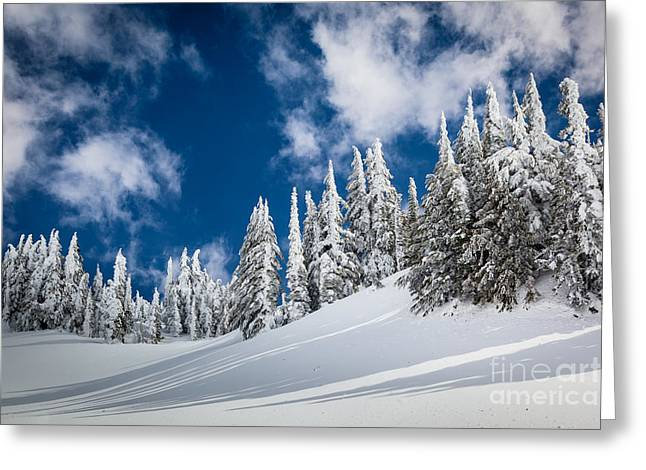 Mazama Trees Greeting Card by Inge Johnsson