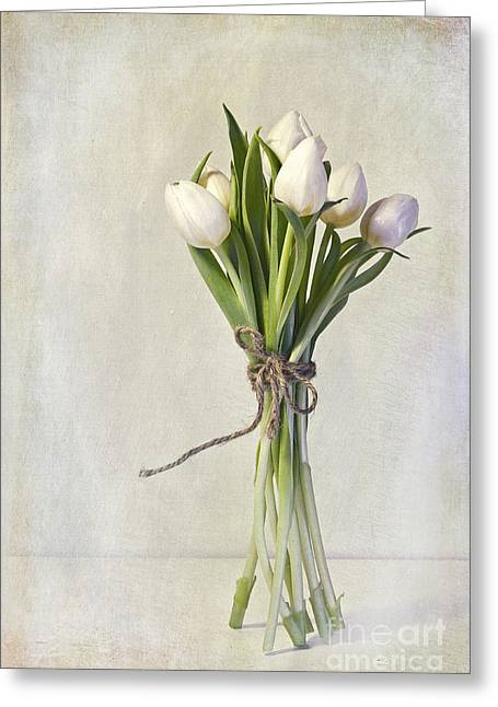 Still Life Glass Greeting Cards - Mazzo Greeting Card by Priska Wettstein