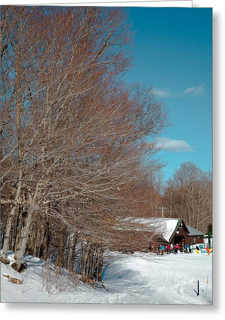 Chairlift Greeting Cards - McCauley Mountain Ski Area III- Old Forge New York Greeting Card by David Patterson