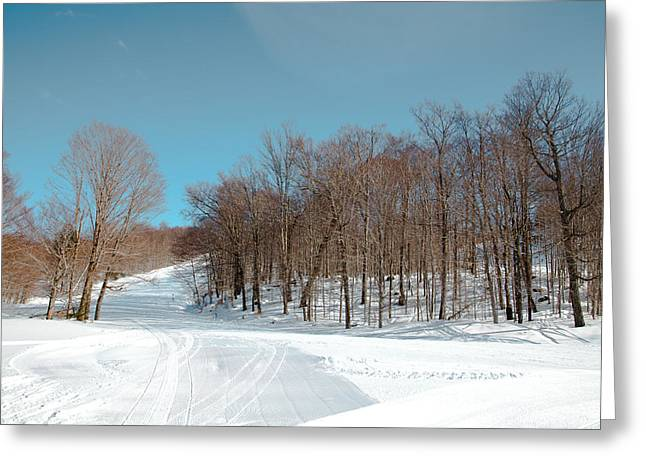 Chairlift Greeting Cards - McCauley Mountain Ski Area VII- Old Forge New York Greeting Card by David Patterson