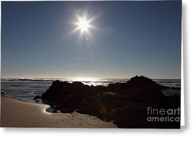 Sandpiper Greeting Cards - McClure Beach Point Reyes California - 5D21329 Greeting Card by Wingsdomain Art and Photography
