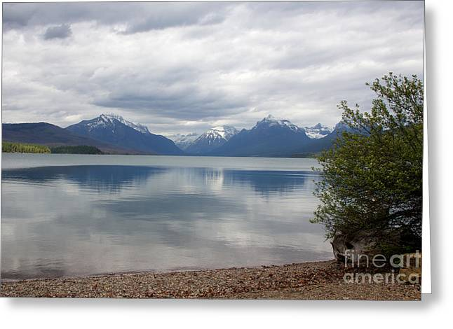 Apgar Greeting Cards - McDonald Lake - Apgar Greeting Card by June Hatleberg Photography