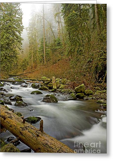 Boren Greeting Cards - McDowell Creek Landscape Greeting Card by Nick  Boren