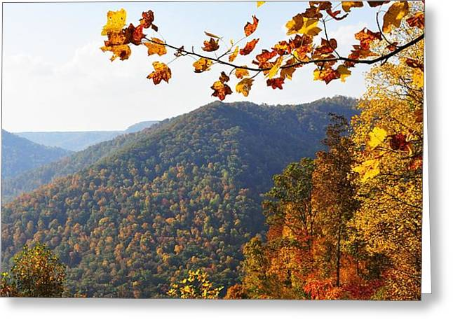 McGuire Mountain Overlook Greeting Card by Thomas R Fletcher