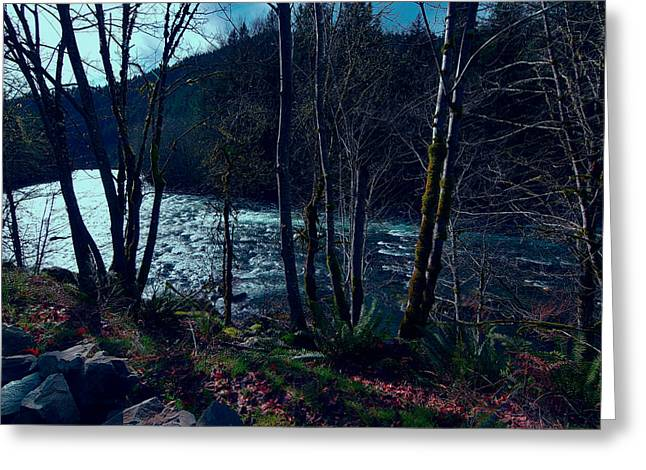 Glistening Water Greeting Cards - McKenzie River at Dusk Greeting Card by Bonnie Bruno